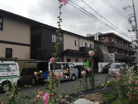 20150629-P橋本-029.JPG