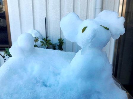20180122-23雪-89.JPG