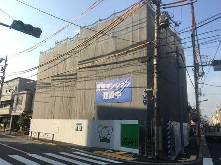 IMG_7713.JPG