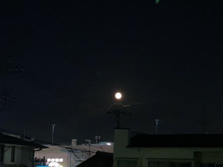 15夜2.JPG