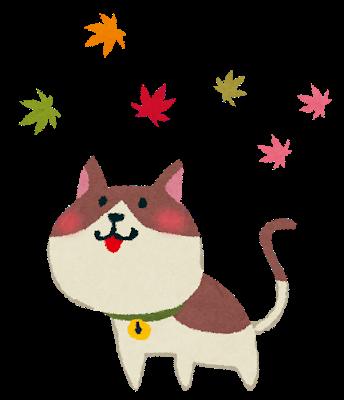 kouyou_cat.png