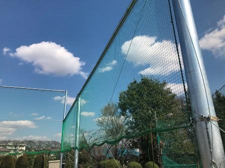 20190312-machida-tennis-10.JPG