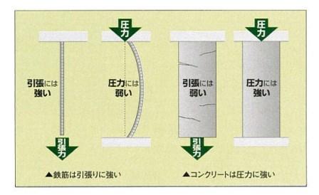 RC1.jpg
