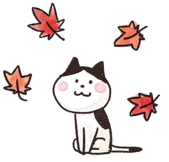 kouyou_cat.jpg
