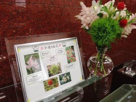 20150528今週のお花.JPG