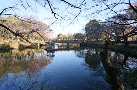 20151129鹿沼公園-002.JPG