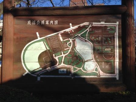 20151129鹿沼公園-013.JPG