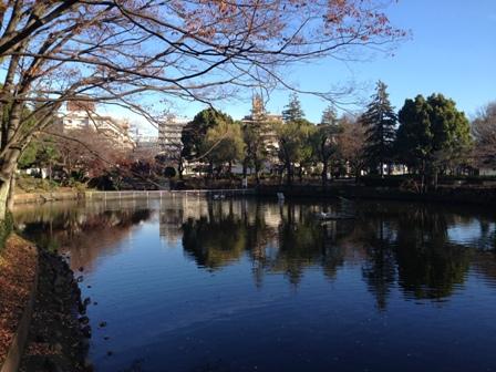 20151129鹿沼公園-025.JPG