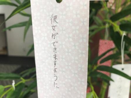 20170808-七夕-04.JPG