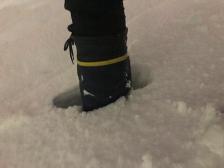 20180122-23雪-09.JPG