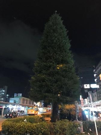 20181130-irumi-11.JPG